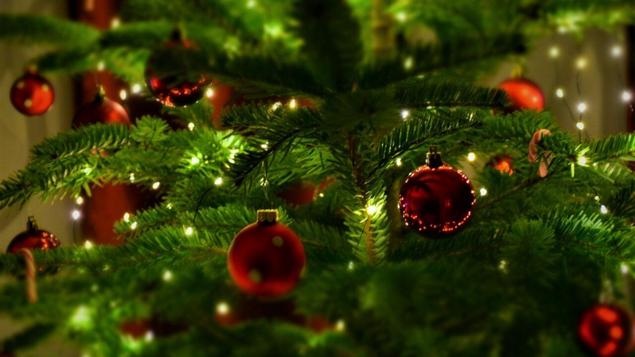Lähikuva joulukuusesta, jossa punaisia joulupalloja.